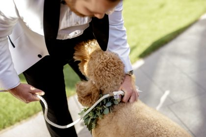 Groom and Dog pre-ceremony
