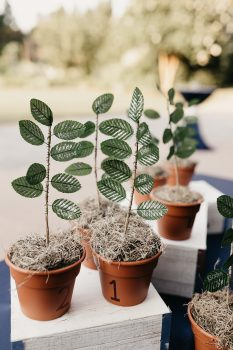 Creative Table Assignments Potted Plants